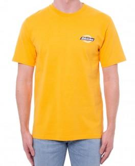 Dickies Ruston T–shirt