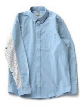 Carhartt WIP L/S Raymond Shirt